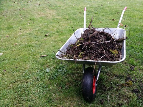 wheelbarrow-2789240_1920